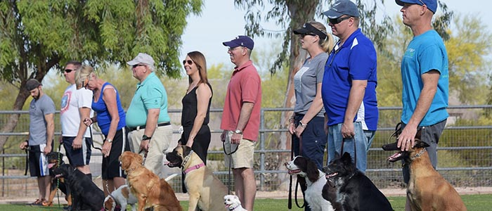 Phoenix Dog Training and Group Obedience Classes